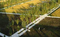 http://landarchs.com/9-facts-landscape-architecture-didnt-know/ Shengyang Jianzhu University campus, China. Credit: Turenscape
