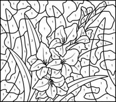 Гладиолус - для печати Цвет по номерам страниц - Hard