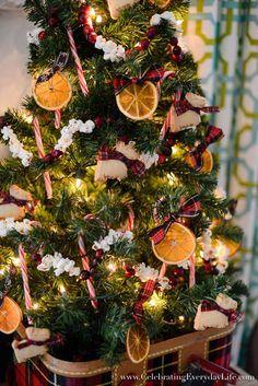 My Kitchen Christmas Tree, Natural Christmas ornaments, homemade christmas ornaments, dried orange ornaments, popcorn garland, cranberry garland, homemade cranberry garland, celebrating everyday life with jennifer carroll, plaid christmas tree, plaid christmas, shortbread cookie ornaments, scotty dog ornaments, scotty dog christmas decor