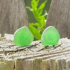 Green Sea Glass Stud Earrings by Wave of Life by WaveofLife, $15.00