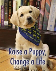 Guiding Eyes for the Blind - Guide Dog School
