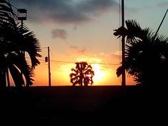 """""""Cuando te vaya bien llévame contigo, cuando te vaya mal no me defraudes"""" Bob Marley #frase #amanecer #solnaciente #santodomingo #republicadominicana #caribe #rd #sd #maroteandord"""