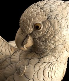 A Japanese carved-ivory parrot okimono is to auction at Bonhams on July 10. The lovable ornithological specimen, sculpted as if in the midst of preening his feathers, is estimated to be worth £10,000 ($15,000).