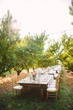 Alabama Fall Orchard Wedding