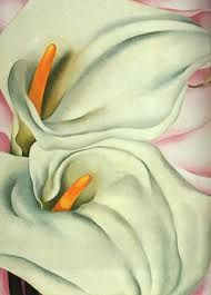 Calla Lillies are a common wedding flower, but so much more special in a Santa Fe wedding because, well, Santa Fe is Georgia O'Keefe country. Georgia O´Keefe Georgia O'keeffe, Wisconsin, Calla Lillies, Calla Lily, Georgia O Keeffe Paintings, Wow Art, Illustration, Arte Floral, Community Art