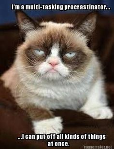 Another thing I have in common with Grumpy Cat!