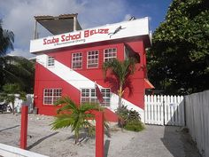 Scuba School & Family Belize a premier dive center located in San Pedro, Ambergris Caye, Belize that specializes in dive courses and offers recreational diving. Belize Destinations, Ambergris Caye, Dive Shop, Diving, Trip Advisor, Places To Visit, Adventure, School, Vacations
