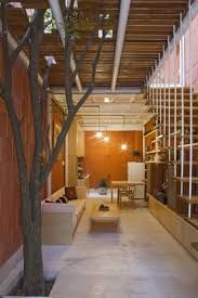 Image result for frank lloyd wright home and studio tree