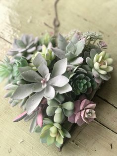 I am having so much fun making Valentine decor items and this heart shaped succulent wreath is my absolute favorite. It is very easy to make and took me less than an hour to complete. Succulent Bowls, Small Succulent Plants, Succulent Wall Art, Succulent Wreath, Succulent Ideas, Artificial Succulents, Faux Succulents, Planting Succulents, Wooden Box Centerpiece