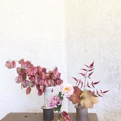 More of my favorite new vases, made all by hand by @avivarowley