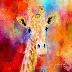 Open edition Jazzy Giraffe canvas art print by Jai Johnson © Jai Johnson   JaiArt.Com - All Rights Reserved  Choose your desired print size below.  Artist watermark will NOT appear on purchased prints.  Production takes 2-4 business days.  Shipping is free.  About Our Canvas Prints   Our canvas prints are created on an acid-free, pH neutral, poly-cotton matte base canvas with archival inks. A matte protective clear coat is applied, preserving it's original matte appearance and making it the…