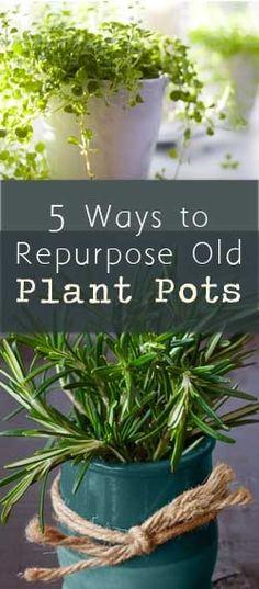 5 Ways to Repurpose Old Plant Pots