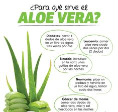 let& see what help aloe vera gives us in 2020 Health And Wellness Quotes, Wellness Tips, Health And Nutrition, Natural Health Remedies, Natural Cures, Keeping Healthy, Healthy Tips, Health Tips For Women, Health And Beauty