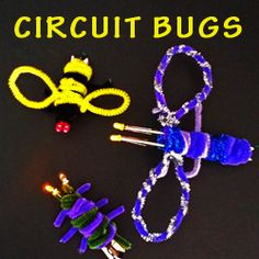 Circuit Bugs ~ STEAM Powered Family