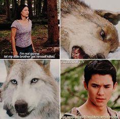 Twilight Saga Quotes, Twilight Saga Series, Twilight Movie, Twilight Wolf Pack, Jacob And Renesmee, Pretty Litle Liars, Twilight Breaking Dawn, Taylor Lautner, Fandoms Unite