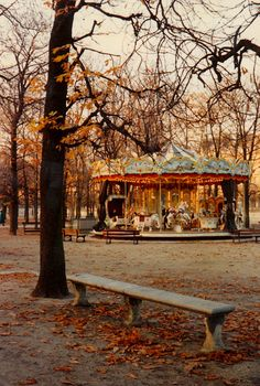 Carousel in autumn park...
