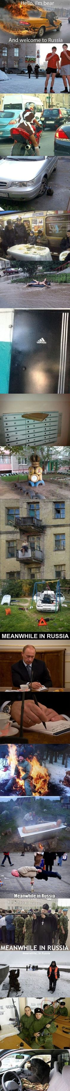 Meanwhile in Russia memes All Meme, Stupid Funny Memes, The Funny, Hilarious, Best Funny Pictures, Funny Images, Funny Photos, Memes Fr, Meanwhile In Russia