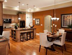 Burnt Orange Kitchen 7124 golfview ct, yorkville, il 60560 | orange kitchen, wall