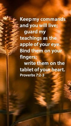 """Proverbs 7:2-3 ~ KEEP GOD'S COMMANDS ON YOUR HEART~ How important it is for us to have the Word of God written on our hearts if we are to live a godly life, pleasing the Lord. We can stand up under temptation, celebrate the victories, and rejoice in our fellowship with the Lord by the Spirit He freely gives us. Psalm 119:10-11 """"I seek you with all my heart; do not let me stray from your commands. I have hidden your word in my heart that I might not sin against you."""""""