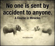 No one is sent by accident to anyone ༺♡༻ ACIM