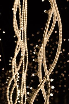 Christmas Lights Berlin by Brut Deluxe