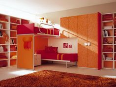Murphy Bed Bunk Beds Fancy Decorating Ideas