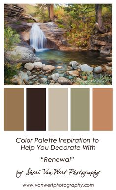 Color palette inspiration based on my image of a forest waterfall. A place where fairies can play protected by forest and smooth river rocks. Brown Color Schemes, Paint Color Schemes, Colour Pallette, Color Combos, Interior Paint Colors, Paint Colors For Home, House Colors, Interior Design, Backyard Pool Landscaping