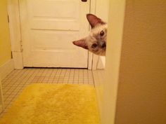 I-didnt-notice-she-followed-me-into-the-bathroom-until-I-saw-this