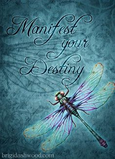 Manifest Your Destiny - Dragonfly Dragonfly Symbolism, Dragonfly Meaning, Dragonfly Quotes, Dragonfly Images, Dragonfly Art, Dragonfly Tattoo, Hummingbird Tattoo, Meant To Be Quotes, We Are The World