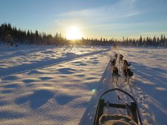 Morning Ride with Active Lapland.