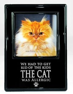 1000+ images about Pet Gifts on Pinterest | Roads, Frames ...