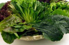 LIST OF FOODS LOW IN PHOSPHORUS      Read more: http://www.livestrong.com/article/28674-list-foods-low-phosphorus/#ixzz2MidlSGqV