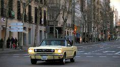 1966 Mustang Springtime Yellow