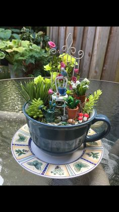 If you are looking for Diy Summer Garden Teacup Fairy Garden Ideas, You come to the right place. Here are the Diy Summer Garden Teacup Fairy Ga. Indoor Fairy Gardens, Mini Fairy Garden, Gnome Garden, Miniature Fairy Gardens, Fairy Gardens For Kids, Summer Diy, Summer Garden, Teacup Crafts, Little Gardens