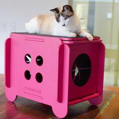 Toquinha de chão CatStool - Minimall Pet Design Diy Cat Tree, Pet Camera, Cat Attack, Puppy House, Art Diy, Cat Room, Pet Furniture, Cat Accessories, Animal House