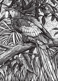 Welcome to Dover Publications From: Creative Haven Woodcut Designs Coloring Book: Diverse Designs on a Dramatic Black Background Animal Coloring Pages, Colouring Pages, Coloring Books, Adult Coloring, Woodcut Art, Linocut Prints, Ink Pen Drawings, Animal Drawings, Gravure Illustration