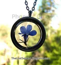 Hey, I found this really awesome Etsy listing at https://www.etsy.com/listing/223255449/pressed-flower-necklace-real-blue