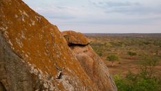 A linear and pan timelapse of granitic rock boulders against a bushveld landscape at the start of summer(lush green leaves and dry landscape). Kruger National Park, Lush Green, Bouldering, Green Leaves, Stock Footage, Monument Valley, Rock, Landscape, Summer