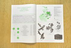 Atelier Müesli – Design graphique report