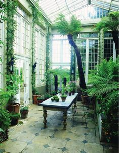 The 10 Best greenhouse ideas Outdoor Greenhouse, Cheap Greenhouse, Greenhouse Plans, Mini Greenhouse, Cozy Backyard, Small Backyard Pools, Wooden Greenhouses, Unique Garden Decor, Greenhouse Interiors