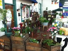 Rosemill florist selling vintage plants (stands, crates, etc) at King Richards