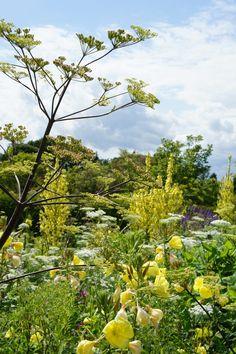 Great Dixter Garden, juli 2012