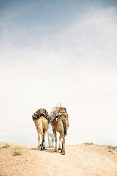 Agafay desert, which stretches from the outskirts of Marrakech to the base of the Atlas Mountains