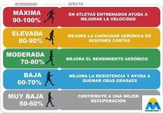 Zonas de entrenamiento en ciclismo – Potencia al máximo tu aptitud Hiit, Health And Nutrition, Fitness Motivation, Ideas Para, Fat Burning, Wealth, Madrid, Trail, Gym