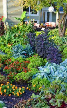 Create a No-Till Garden and Retire Your Tiller Forever Improve Soil with a No-Till Garden Backyard Vegetable Gardens, Vegetable Garden Design, Garden Tools, Potager Garden, Garden Gazebo, Gardening Vegetables, Garden Beds, No Till Garden, Dig Gardens