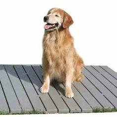 dog kennel and run flooring