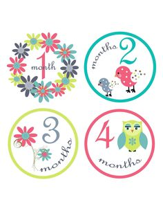 Free Printable Baby Monthly Milestone Signs In Grey