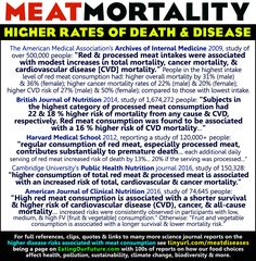 Eating Red Meat & Higher Rates of Cancer, Heart Disease, Diabetes, Death. Vegan Memes, Vegan Humor, Degenerative Disease, Cardiovascular Disease, American Medical Association, Medical Journals, Internal Medicine, Best Diets