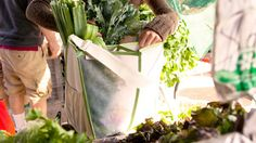 Mercado - Protect your produce; Multi Compartment farmers market tote via quirky.com