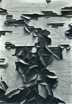 On view until August Image: Aaron Siskind. Jerome 21 The Art Institute of Chicago, Gift of Aaron Siskind. Institute Of Design, Art Institute Of Chicago, Texture Photography, Abstract Photography, Digital Photography, Classic Photography, Levitation Photography, Experimental Photography, Exposure Photography
